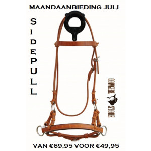 Sidepull Harness Leather